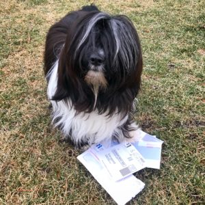 Juno gets the mail