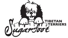 Sugarfoot Tibetan Terriers